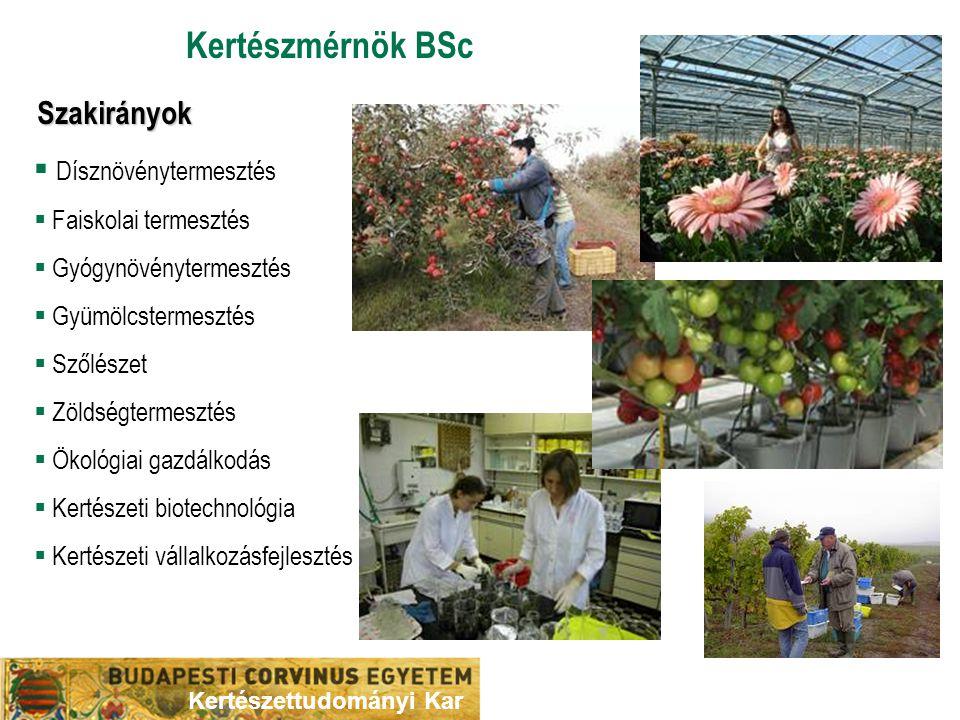 Kertészmérnök BSc Szakirányok  Dísznövénytermesztés  Faiskolai termesztés  Gyógynövénytermesztés  Gyümölcstermesztés  Szőlészet  Zöldségtermeszt