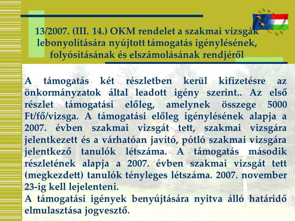 13/2007. (III. 14.) OKM rendelet a szakmai vizsgák lebonyolítására nyújtott támogatás igénylésének, folyósításának és elszámolásának rendjéről A támog