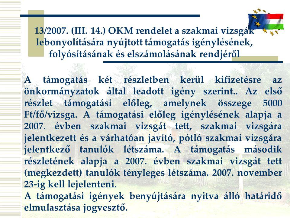 13/2007.(III.