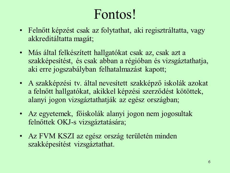 6 Fontos.
