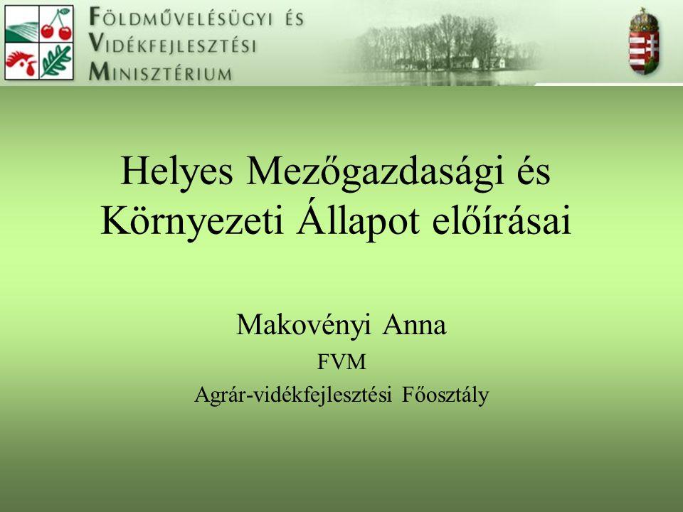 Helyes Mezőgazdasági és Környezeti Állapot előírásai Makovényi Anna FVM Agrár-vidékfejlesztési Főosztály