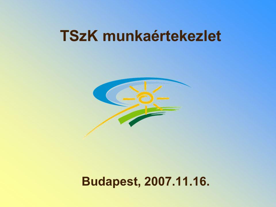 TSzK munkaértekezlet Budapest, 2007.11.16.