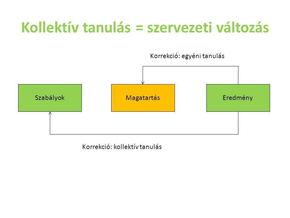 Kollektív tanulás = szervezeti változás SzabályokMagatartásEredmény Korrekció: kollektív tanulás Korrekció: egyéni tanulás