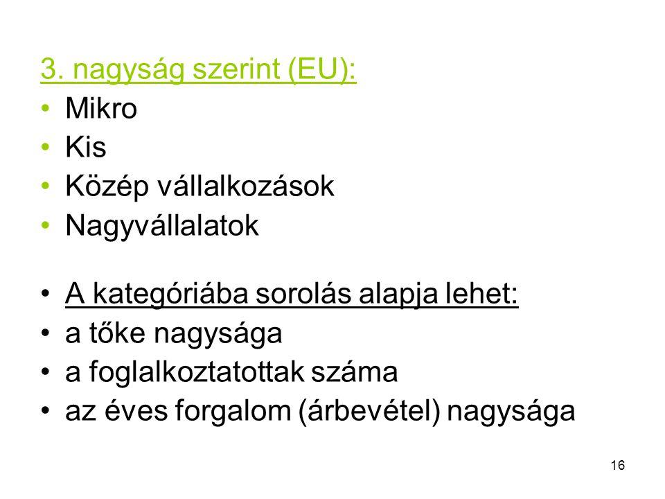 16 3. nagyság szerint (EU): Mikro Kis Közép vállalkozások Nagyvállalatok A kategóriába sorolás alapja lehet: a tőke nagysága a foglalkoztatottak száma