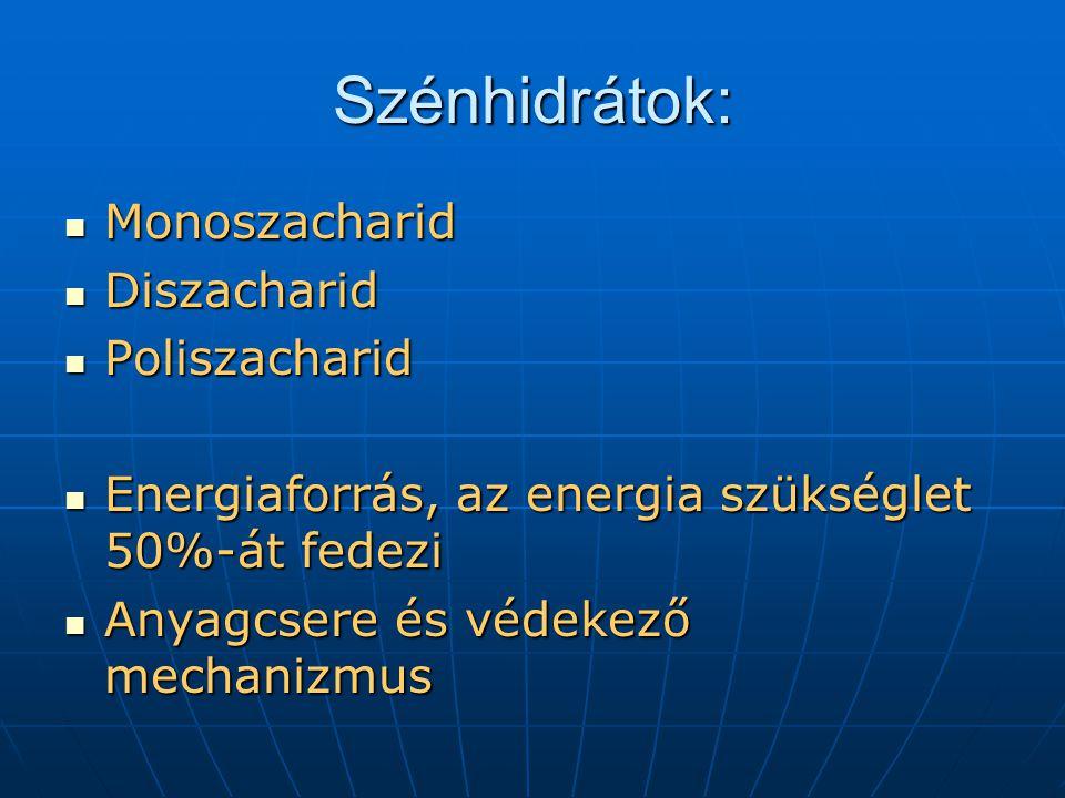 Szénhidrátok: Monoszacharid Monoszacharid Diszacharid Diszacharid Poliszacharid Poliszacharid Energiaforrás, az energia szükséglet 50%-át fedezi Energ