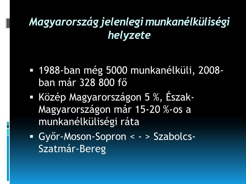 Magyarország jelenlegi munkanélküliségi helyzete  1988-ban még 5000 munkanélküli, 2008- ban már 328 800 fő  Közép Magyarországon 5 %, Észak- Magyaro