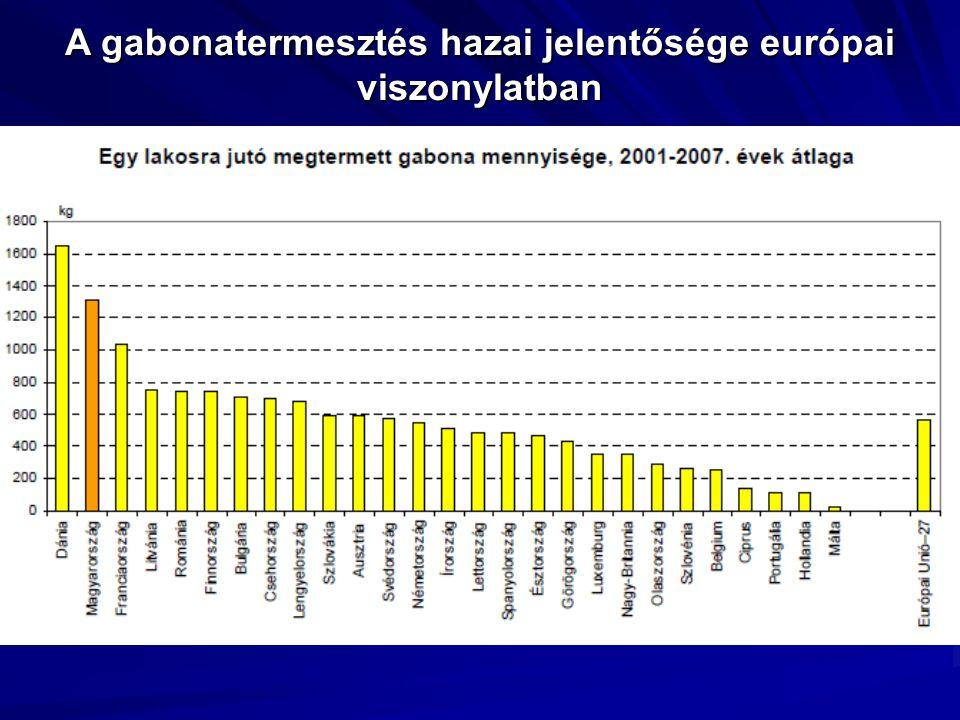 A gabonatermesztés hazai jelentősége európai viszonylatban