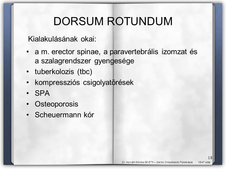 18/47 oldalDr. Horváth Mónika SE-ETK – Gerinc Ortopédia és Fizioterápia 18 DORSUM ROTUNDUM a m. erector spinae, a paravertebrális izomzat és a szalagr