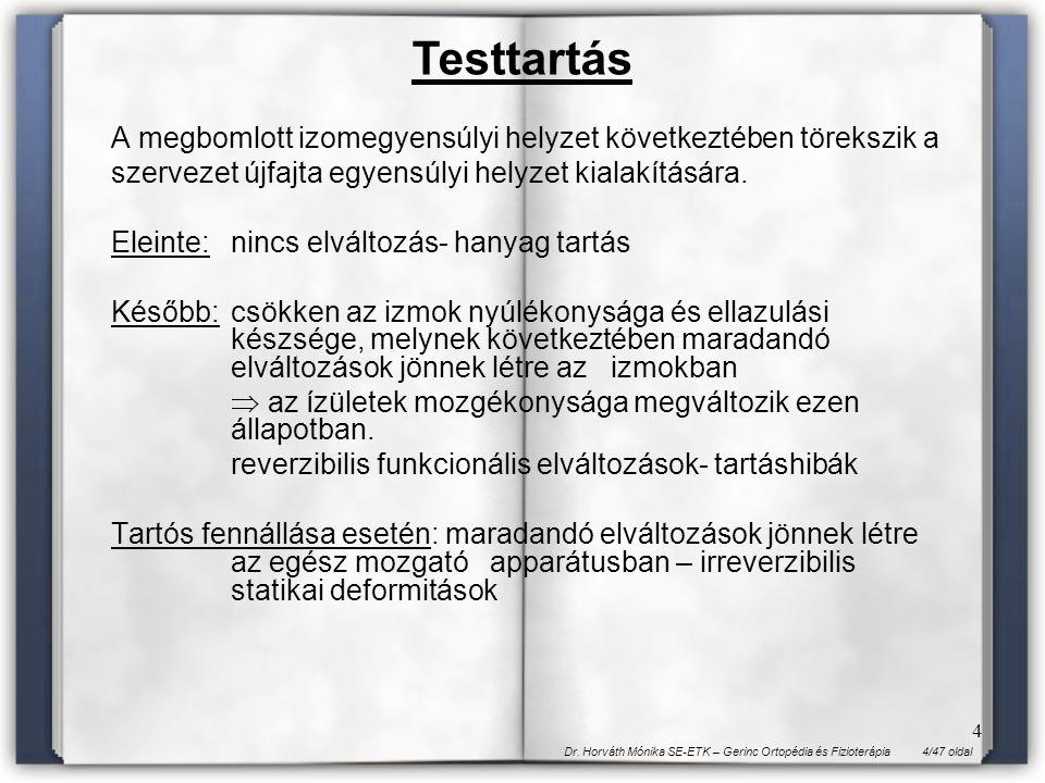4/47 oldalDr. Horváth Mónika SE-ETK – Gerinc Ortopédia és Fizioterápia 4 A megbomlott izomegyensúlyi helyzet következtében törekszik a szervezet újfaj