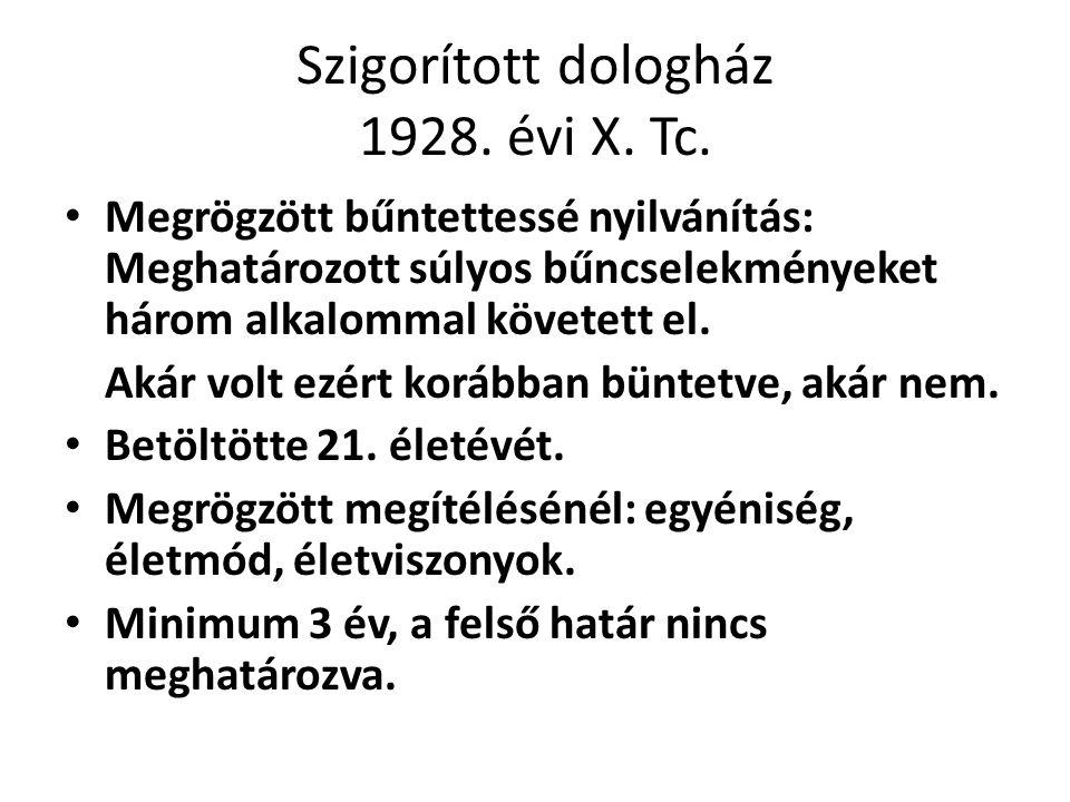 Szigorított dologház 1928. évi X. Tc.