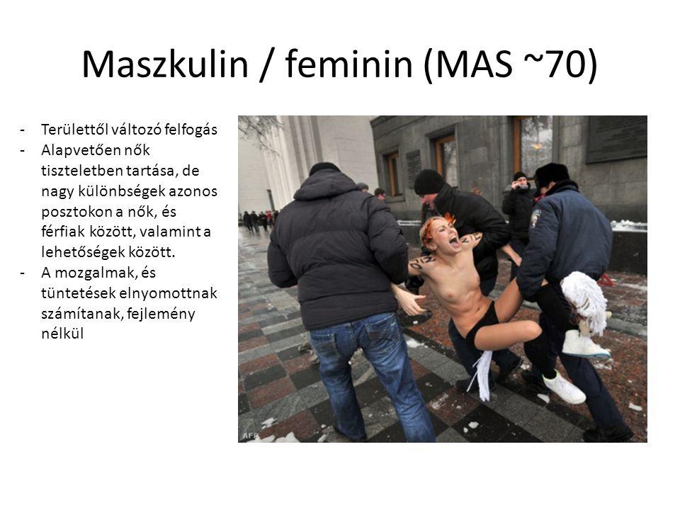 Maszkulin / feminin (MAS ~70) -Területtől változó felfogás -Alapvetően nők tiszteletben tartása, de nagy különbségek azonos posztokon a nők, és férfiak között, valamint a lehetőségek között.