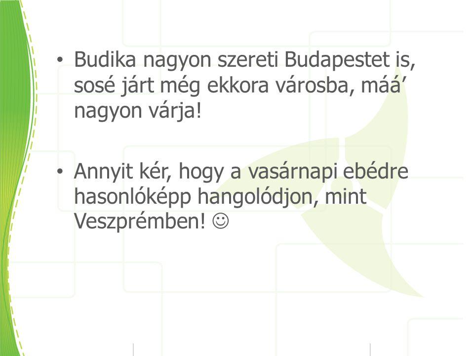 Budika nagyon szereti Budapestet is, sosé járt még ekkora városba, máá' nagyon várja.