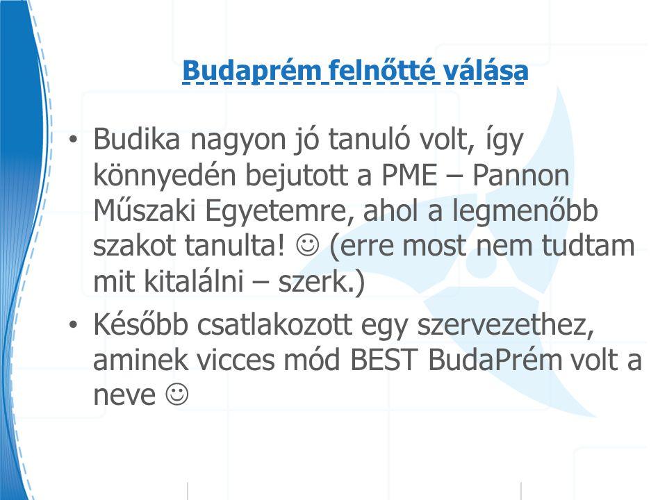 Budaprém felnőtté válása Budika nagyon jó tanuló volt, így könnyedén bejutott a PME – Pannon Műszaki Egyetemre, ahol a legmenőbb szakot tanulta.
