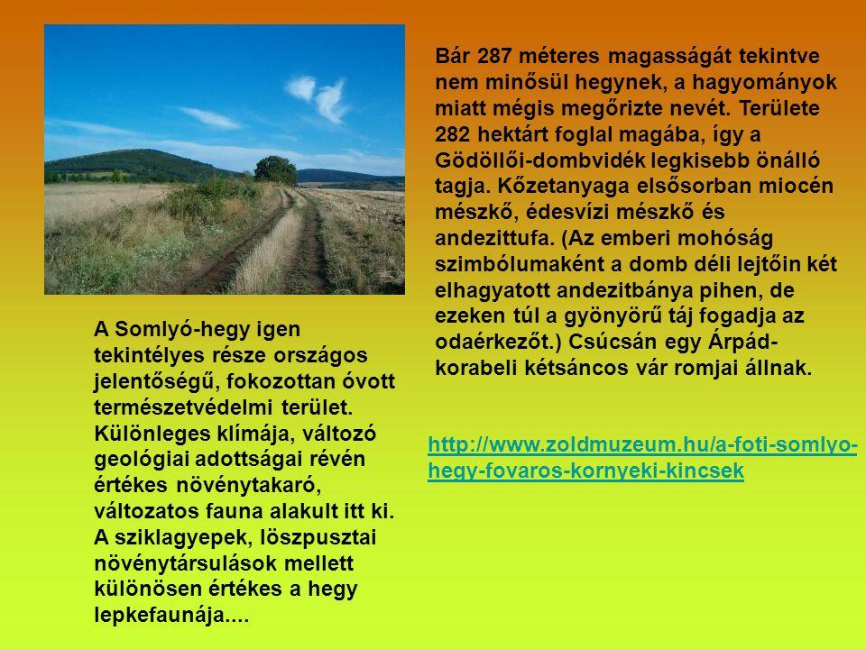 A BTSSZ Természetvédelmi és Természetismereti Bizottsága, és a Pest Megyei Természetbarát Szövetség szeretettel meghív minden kedves Természetjárót 20