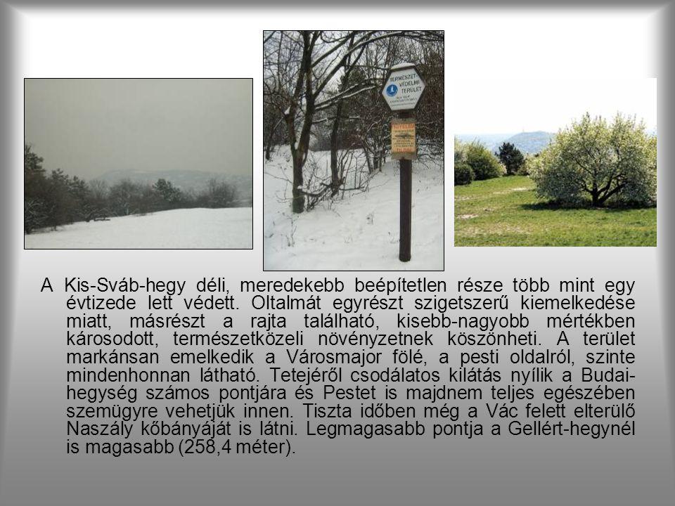 A 7,2 hektáros természetvédelmi terület, a 259 méter magas dombtetővel, a történelem állandó tanúja volt.