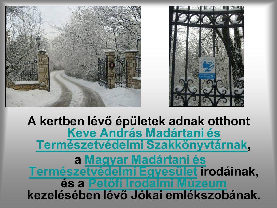 A Jókai-kert Budapesten a Svábhegyen (XII. ker.