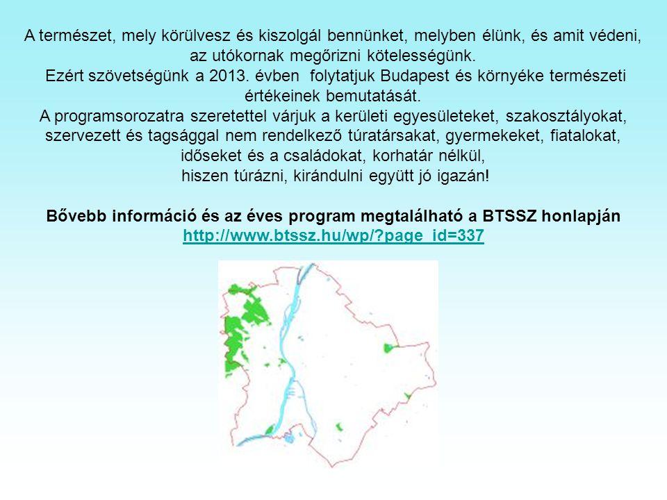 MEGHÍVÓ Csepeli Kis Dunapart, Tamariska-domb. Képek és információk az internetről 2013.01.19. Szombat