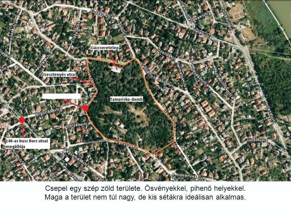 A Tamariska-domb Budapest XXI. kerületében, Csepelen található homokbucka, amely a jégkorszak végén, a földtörténeti jelenkor elején alakult ki. Védet
