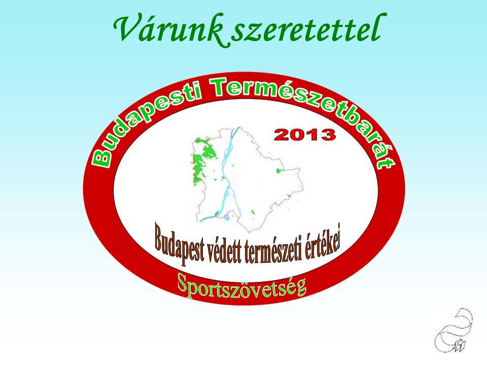 Ismerjük meg Budapest és környéke természeti értékeit. Csepeli Kis Dunapart Tamariska-domb Várunk szeretettel 2013.01.19-én Szombaton. Hegység: Budape