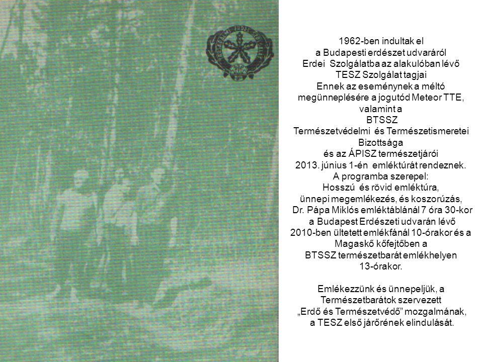 """""""Bp. TESZ Első járőr emléktúra. 2013.06.01. Szombat Meghívó"""