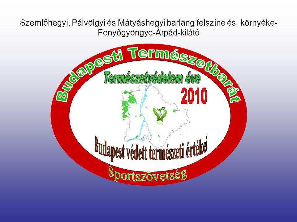 2010.Február 27 Szombat Budapest és környéke természeti értékei IV. Természetismereti és létesítményellenőrző túra Beszámoló