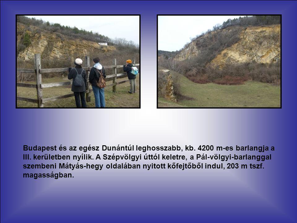 Budapest és az egész Dunántúl leghosszabb, kb.4200 m-es barlangja a III.