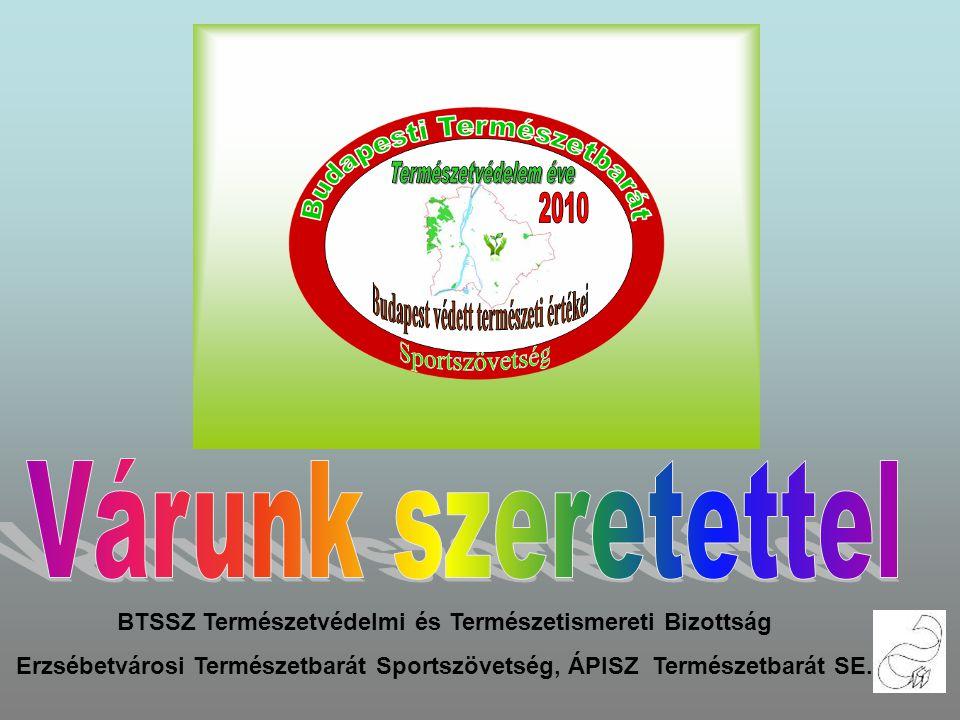 Ismerjük meg Budapest és környéke természeti értékeit Várunk szeretettel 2010.Február 13-án szombaton Találkozó: 9 órakor a Moszkva-téri METRÓ kijáratnál /mozgólépcső felső részénél/ Túraútvonal: BUDAVÁRI SZŐLŐTŐKE – HALÁSZBÁSTYA – VÁRBARLANG BEJÁRATOK – KIRÁLYI PALOTA – TÖRTÉNETI MÚZEUM Táv:6 km Túravezető: Telek György, Bertalan István BTSSZ Természetvédelmi és Természetismereti Bizottság Erzsébetvárosi Természetbarát Sportszövetség, ÁPISZ Természetbarát SE.