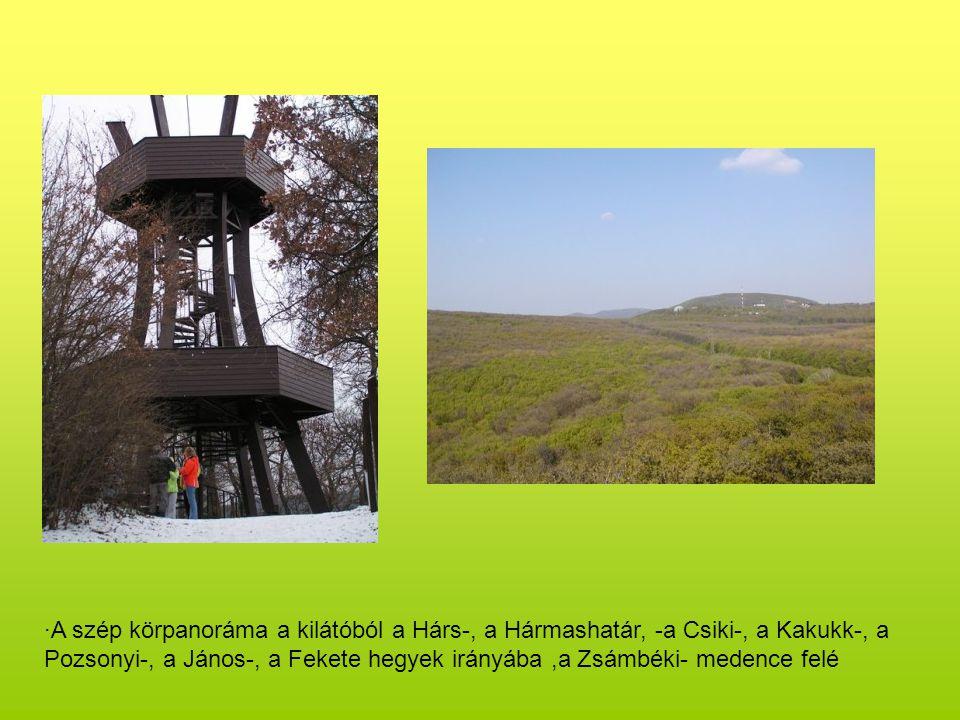 ·A szép körpanoráma a kilátóból a Hárs-, a Hármashatár, -a Csiki-, a Kakukk-, a Pozsonyi-, a János-, a Fekete hegyek irányába,a Zsámbéki- medence felé