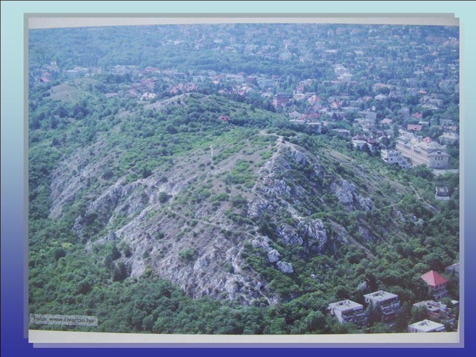 Sas-hegy tanösvény A Budai Sas-hegy Természetvédelmi Terület különleges természeti értékeket őriz a lüktető főváros felett 250 m-rel. A 30 hektárnyi v