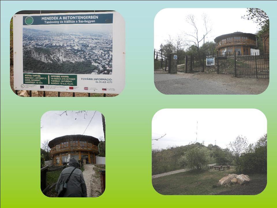Ismerjük meg Budapest és környéke természeti értékeit Föld napja Természetvédelmi séta és vetélkedő, Sas-hegy Várunk szeretettel 2012.