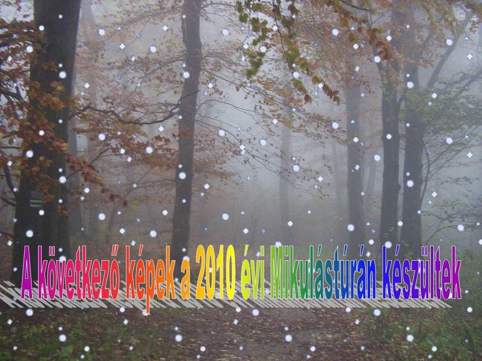 A BUDAPESTI TERMÉSZETBARÁT SPORTSZÖVETSÉG Gyalogtúra bizottsága és Természetvédelmi és természetismereti Bizottsága. 2011. december 03–án szombaton MI