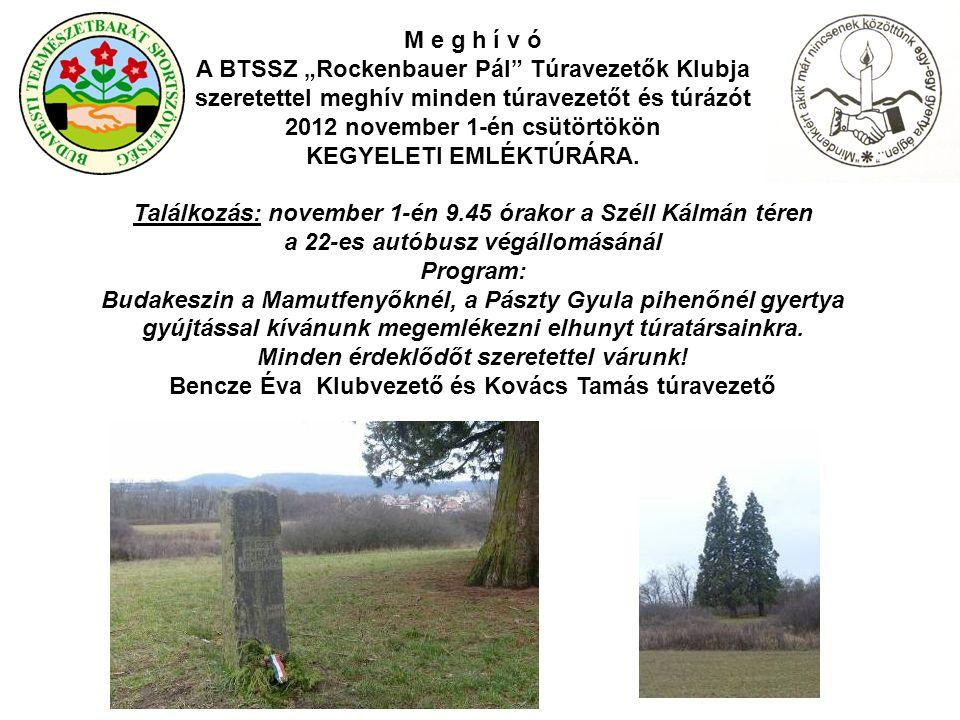 Mindenkiért akik már nincsenek közöttünk egy-egy gyertya égjen A budapesti természetbarátok ebben az évben is több helyen Kegyeleti Emléktúrákkal emlékeznek elhunyt túratársaikra.