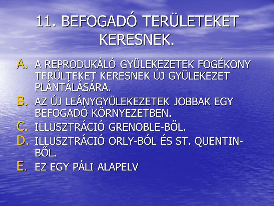 11. BEFOGADÓ TERÜLETEKET KERESNEK. A.