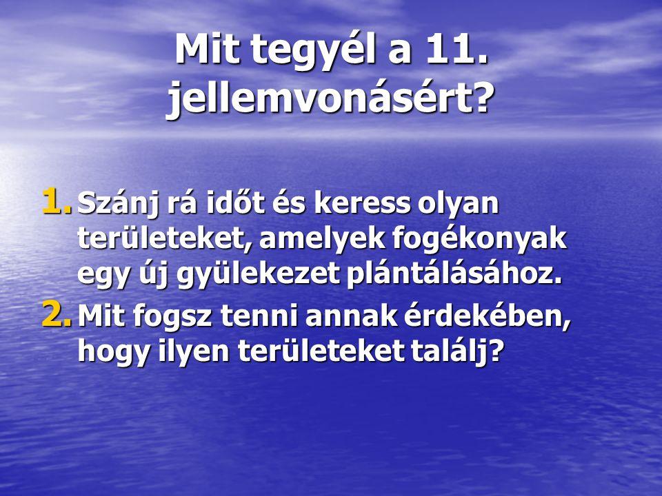 Mit tegyél a 11. jellemvonásért? 1. Szánj rá időt és keress olyan területeket, amelyek fogékonyak egy új gyülekezet plántálásához. 2. Mit fogsz tenni