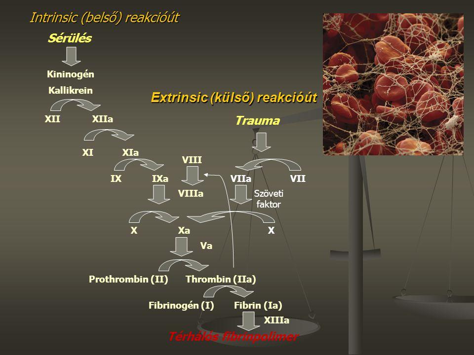 Extrinsic (külső) reakcióút Intrinsic (belső) reakcióút Kininogén Kallikrein XIIXIIa XIXIa IXIXa VIIIa XXa Va Prothrombin (II)Thrombin (IIa) Sérülés F