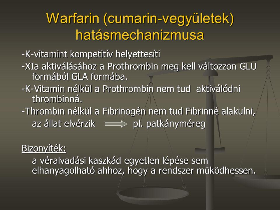 Warfarin (cumarin-vegyületek) hatásmechanizmusa -K-vitamint kompetitív helyettesíti -XIa aktiválásához a Prothrombin meg kell változzon GLU formából G
