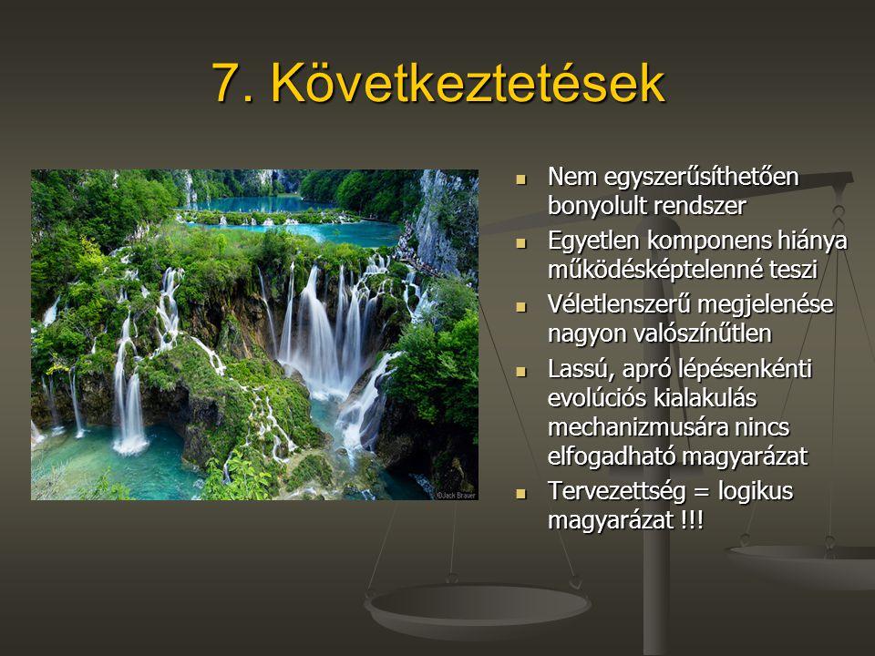 7. Következtetések Nem egyszerűsíthetően bonyolult rendszer Nem egyszerűsíthetően bonyolult rendszer Egyetlen komponens hiánya működésképtelenné teszi
