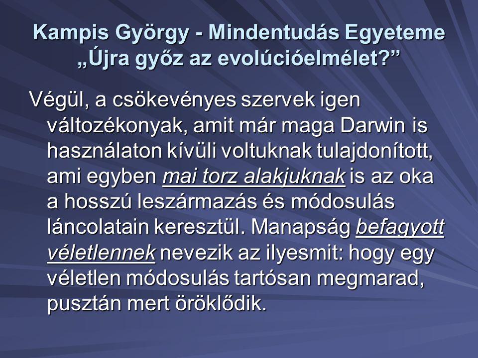 """Kampis György - Mindentudás Egyeteme """"Újra győz az evolúcióelmélet?"""" Végül, a csökevényes szervek igen változékonyak, amit már maga Darwin is használa"""