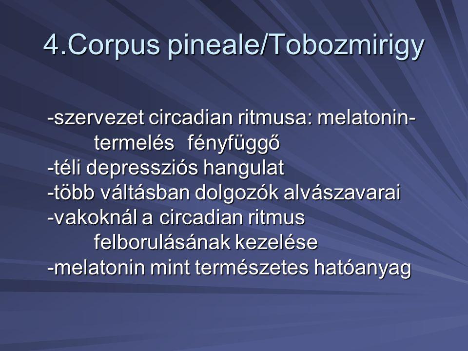 4.Corpus pineale/Tobozmirigy -szervezet circadian ritmusa: melatonin- termelés fényfüggő -téli depressziós hangulat -több váltásban dolgozók alvászava