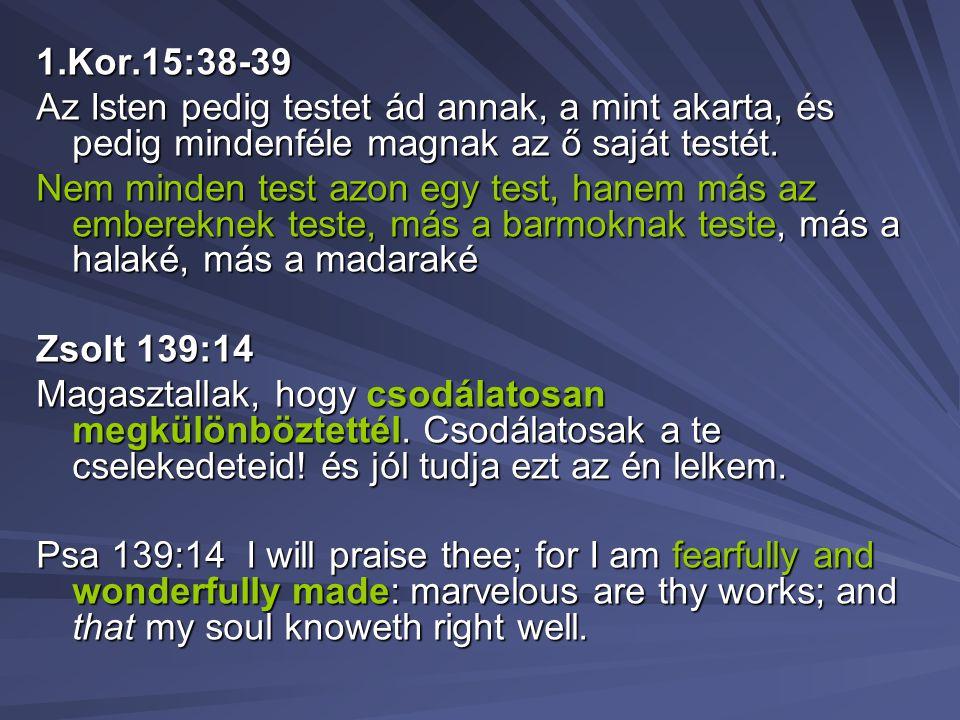 1.Kor.15:38-39 Az Isten pedig testet ád annak, a mint akarta, és pedig mindenféle magnak az ő saját testét. Nem minden test azon egy test, hanem más a