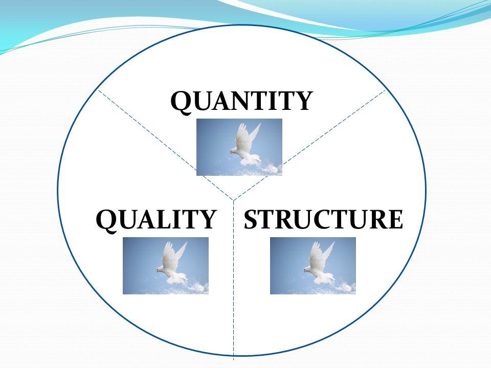 QUANTITY QUALITY STRUCTURE