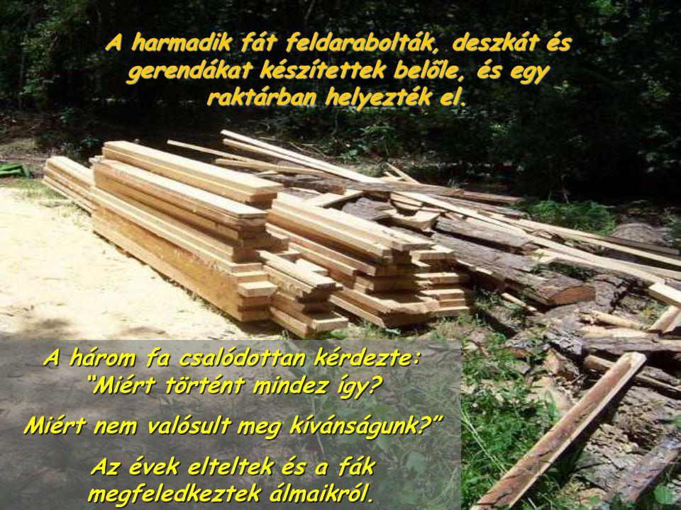A harmadik fát feldarabolták, deszkát és gerendákat készítettek belőle, és egy raktárban helyezték el.