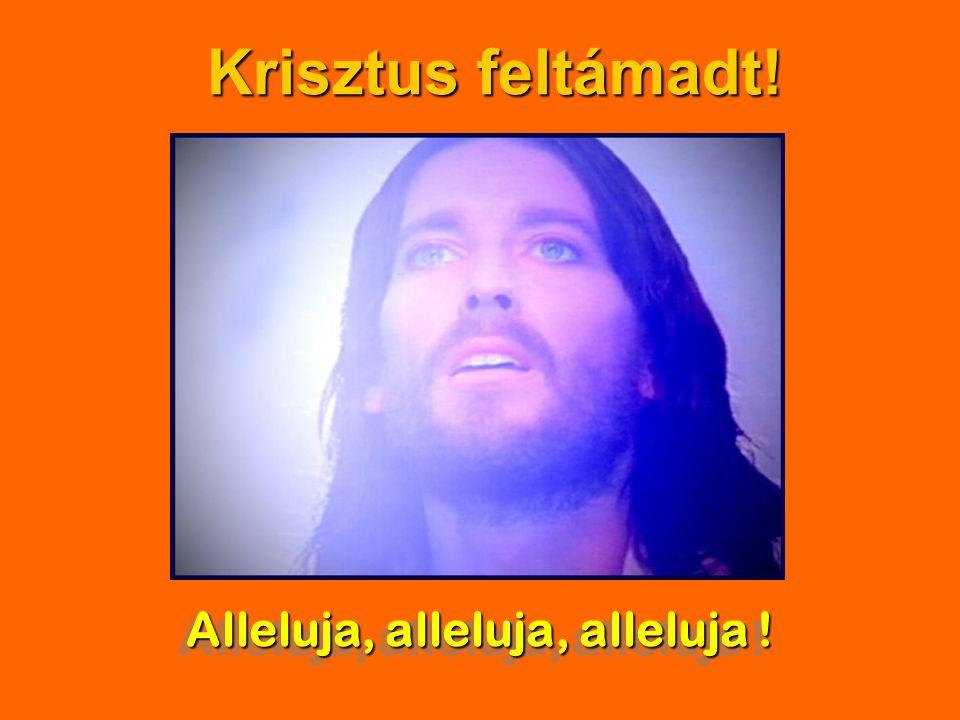 Alleluja, alleluja, alleluja ! Krisztus feltámadt!