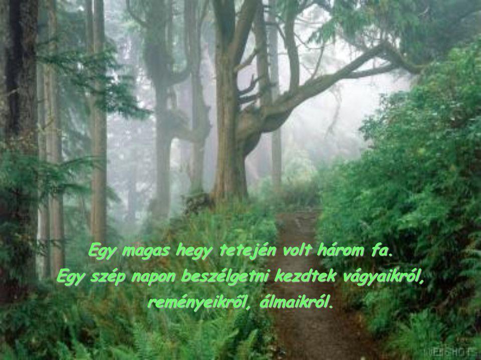 Egy magas hegy tetején volt három fa.
