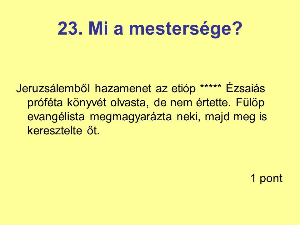 23.Mi a mestersége.