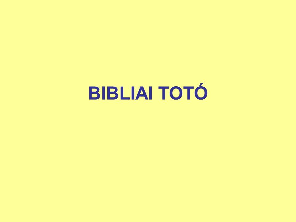 BIBLIAI TOTÓ