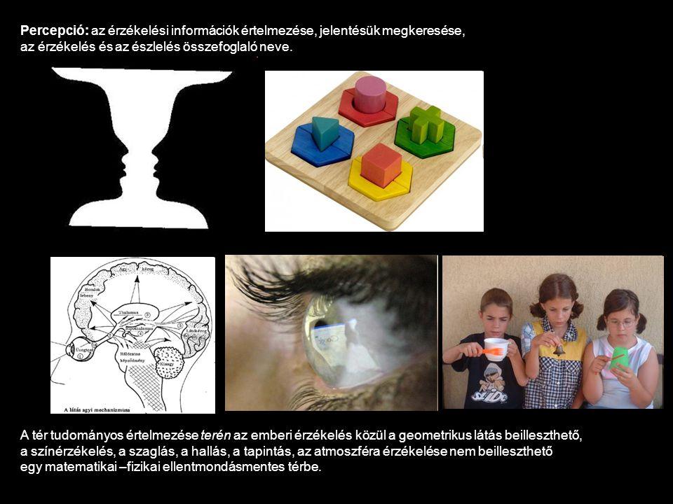 Percepció: az érzékelési információk értelmezése, jelentésük megkeresése, az érzékelés és az észlelés összefoglaló neve. A tér tudományos értelmezése