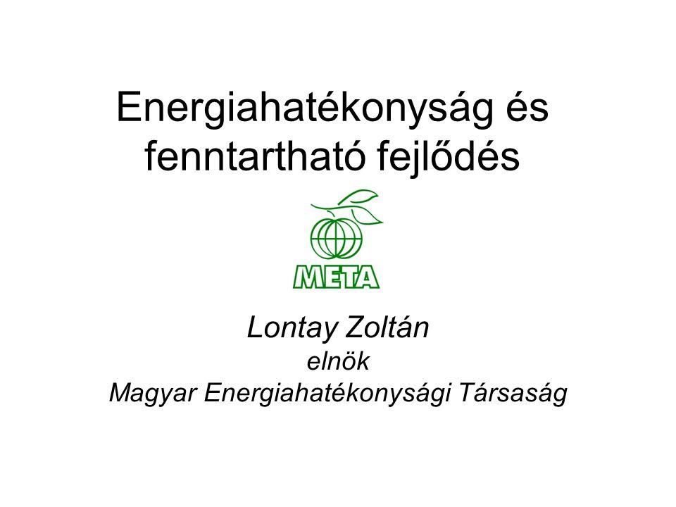 Energiahatékonyság és fenntartható fejlődés Lontay Zoltán elnök Magyar Energiahatékonysági Társaság