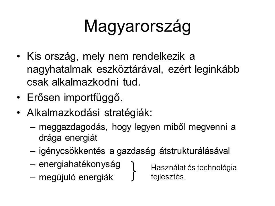 Magyarország Kis ország, mely nem rendelkezik a nagyhatalmak eszköztárával, ezért leginkább csak alkalmazkodni tud. Erősen importfüggő. Alkalmazkodási