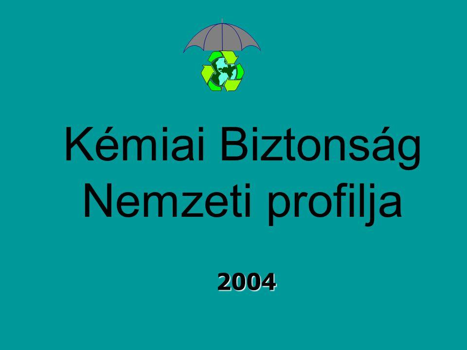 Kémiai Biztonság Nemzeti profilja 2004